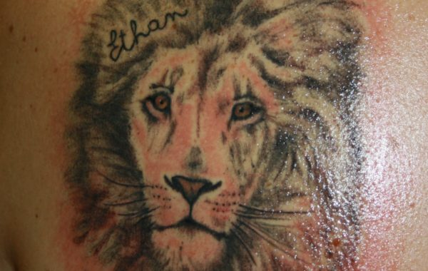 Tattoo – Animali